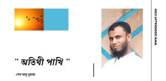 Doinik-Alap-Poem-Kobi-কবি-আবু-মুয়াজ-Kobita-কবিতা-অতিথী পাখি